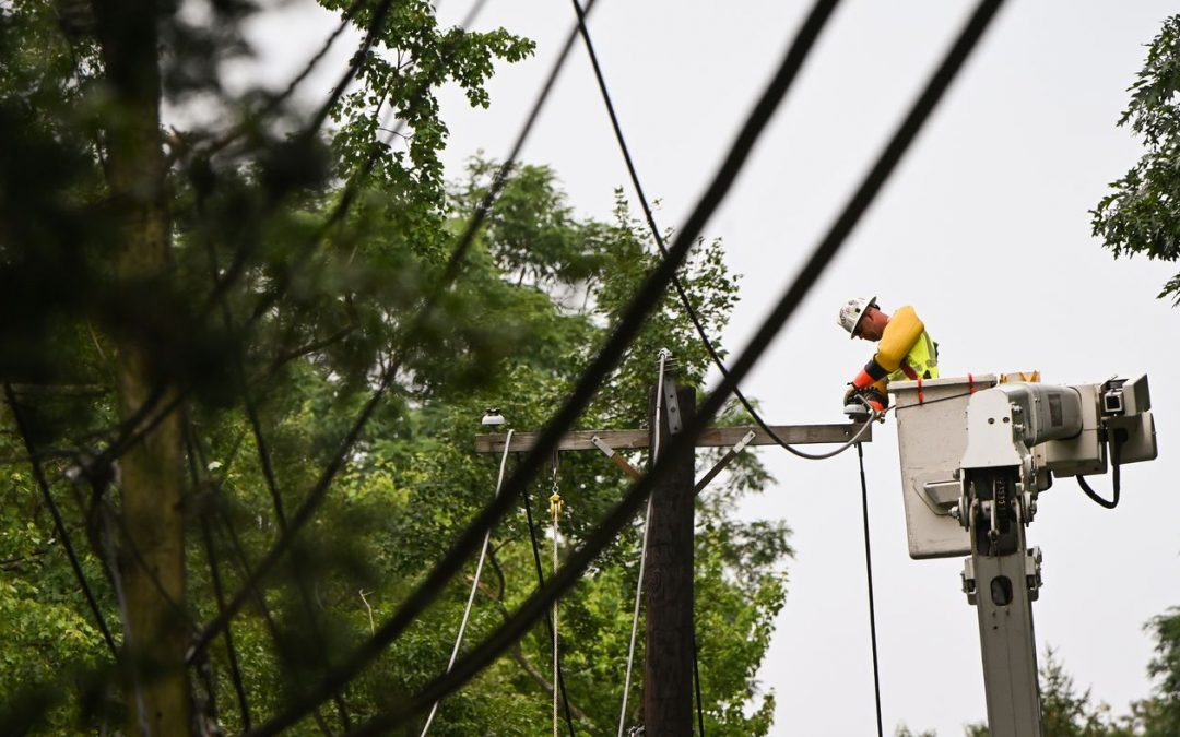 Outside Right-of-Way Tree Risk Along Electrical Transmission Lines