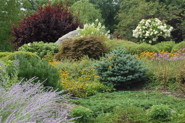Reasons to Plant a Shrub in Your Yard